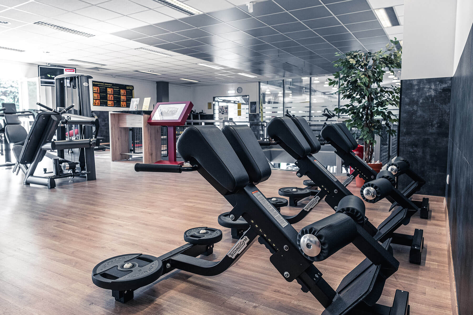 fitness gym lüdenscheid fitnessstudio