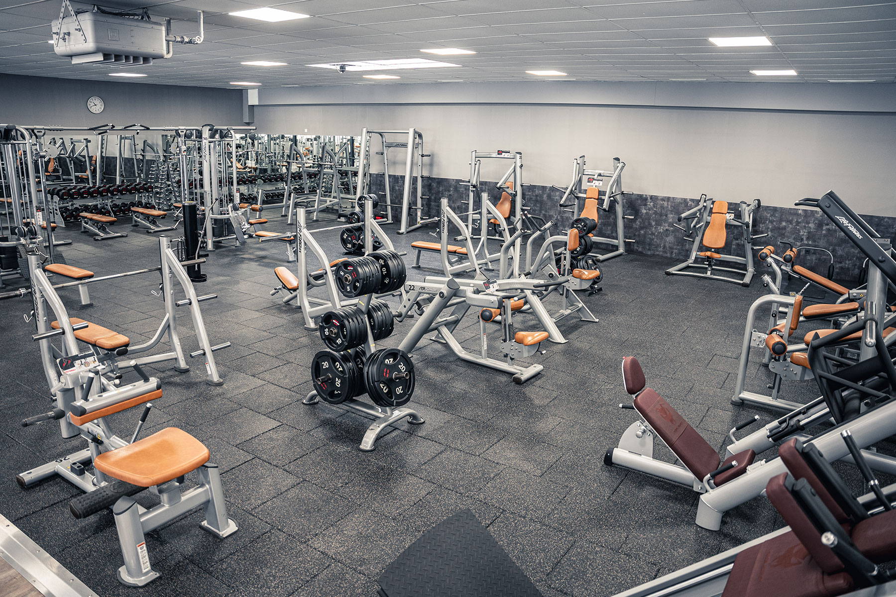 fitness gym viersen freie gewichte