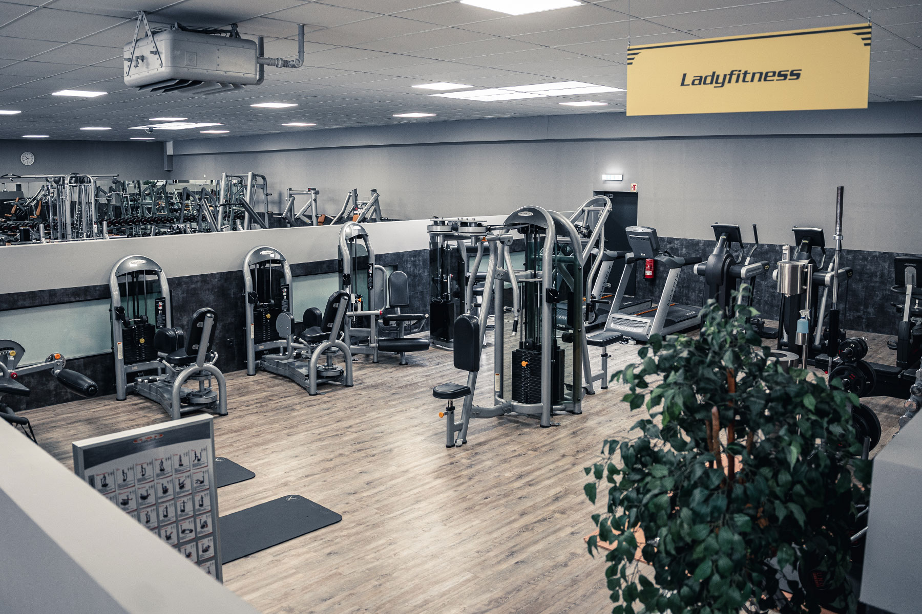 fitness gym viersen lady fitness