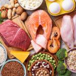 gesunde fette proteine ernährung fitness gym magazin